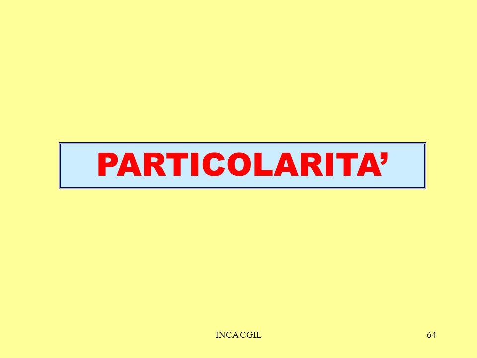 INCA CGIL64 PARTICOLARITA