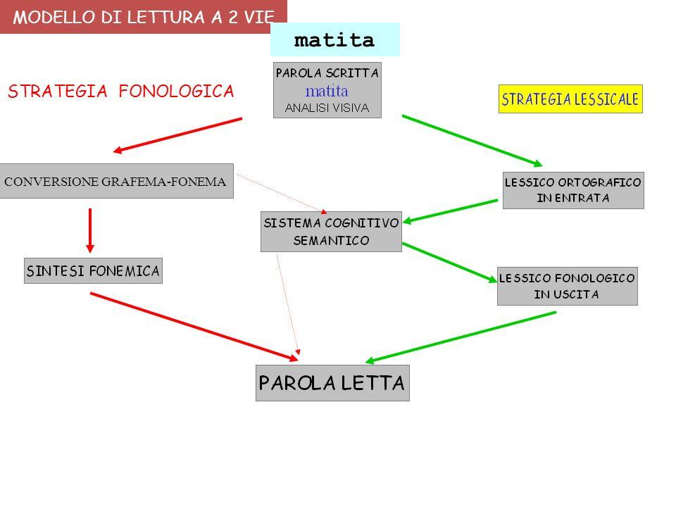 MODELLI E FASI DI ACQUISIZIONE DELLA LETTURA E DELLA SCRITTURA NELLO SVILUPPO TIPICO http://www.aiditalia.org/