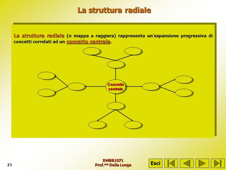 RMBB1071 Prof. ssa Della Longa23 La struttura radiale La struttura radiale La struttura radiale concetto centrale La struttura radiale (o mappa a ragg