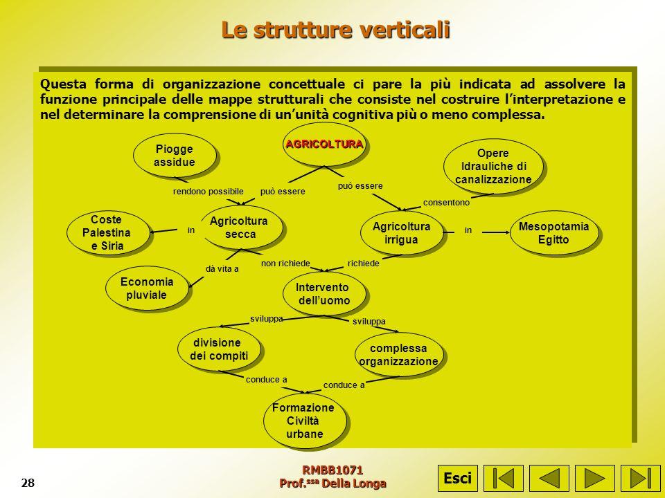 RMBB1071 Prof. ssa Della Longa28 Le strutture verticali Le strutture verticali Questa forma di organizzazione concettuale ci pare la più indicata ad a