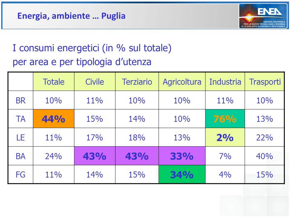 TotaleCivileTerziarioAgricolturaIndustriaTrasporti BR10%11%10% 11%10% TA 44% 15%14%10% 76% 13% LE11%17%18%13% 2% 22% BA24% 43% 33% 7%40% FG11%14%15% 3