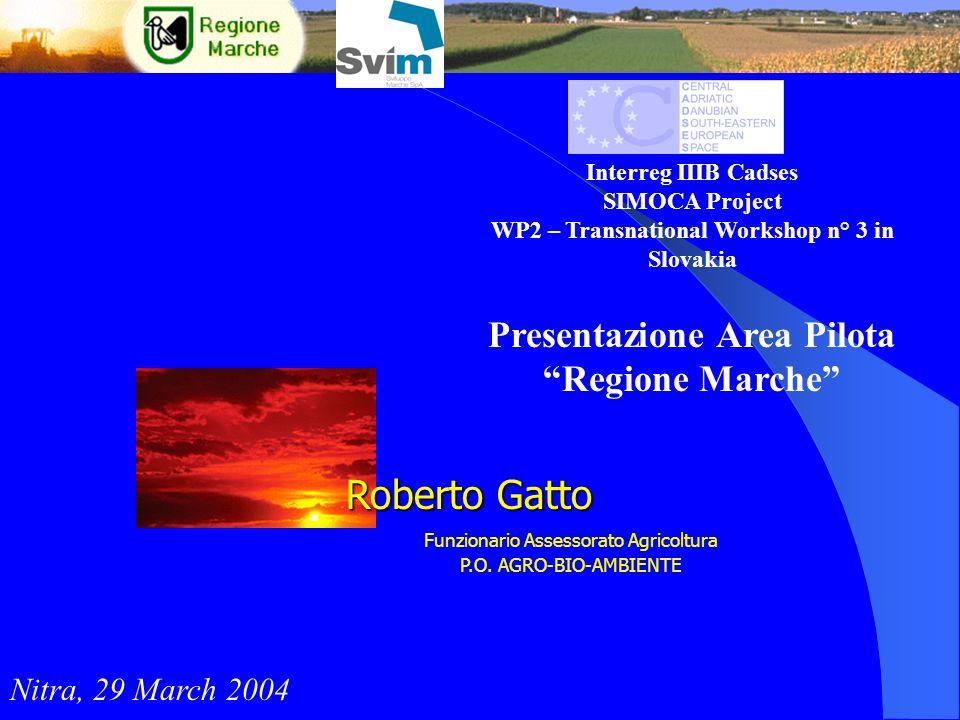 Interreg IIIB Cadses SIMOCA Project WP2 – Transnational Workshop n° 3 in Slovakia Presentazione Area Pilota Regione Marche Nitra, 29 March 2004 Robert