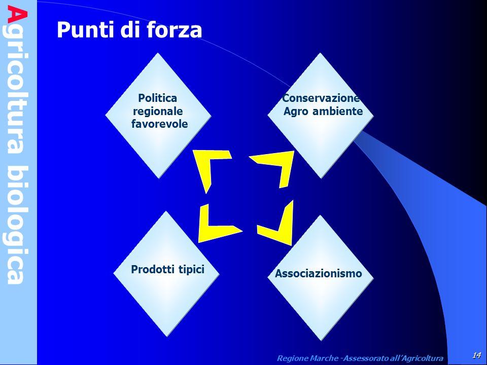 Agricoltura biologica 14 Regione Marche -Assessorato allAgricoltura Punti di forza Prodotti tipici Associazionismo Politica regionale favorevole Conse