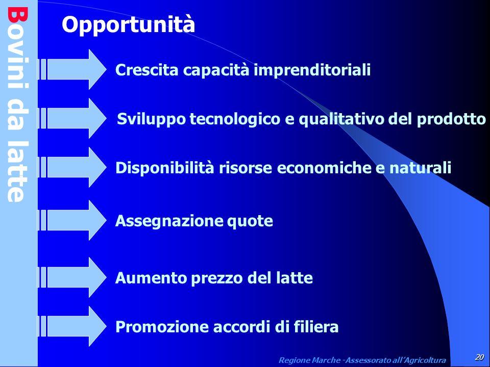 Bovini da latte 20 Regione Marche -Assessorato allAgricoltura Opportunità Crescita capacità imprenditorialiSviluppo tecnologico e qualitativo del prod