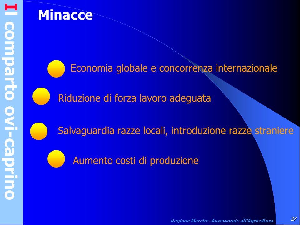 Il comparto ovi-caprino27 Regione Marche -Assessorato allAgricoltura Minacce Economia globale e concorrenza internazionale Riduzione di forza lavoro a