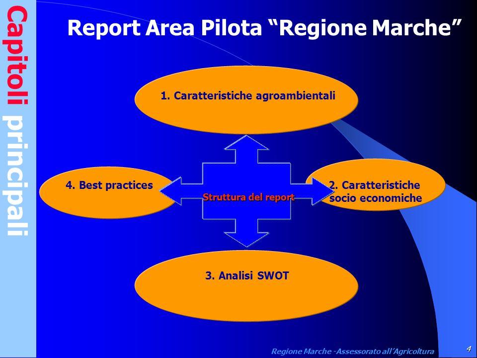 Capitoli principali Report Area Pilota Regione Marche 4. Best practices 2. Caratteristiche socio economiche 3. Analisi SWOT 1. Caratteristiche agroamb