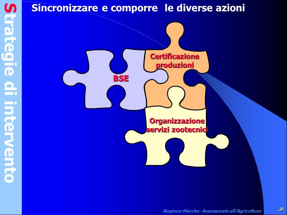 Strategie di intervento 38 Regione Marche -Assessorato allAgricoltura Sincronizzare e comporre le diverse azioniBSE Certificazione produzioni Organizz