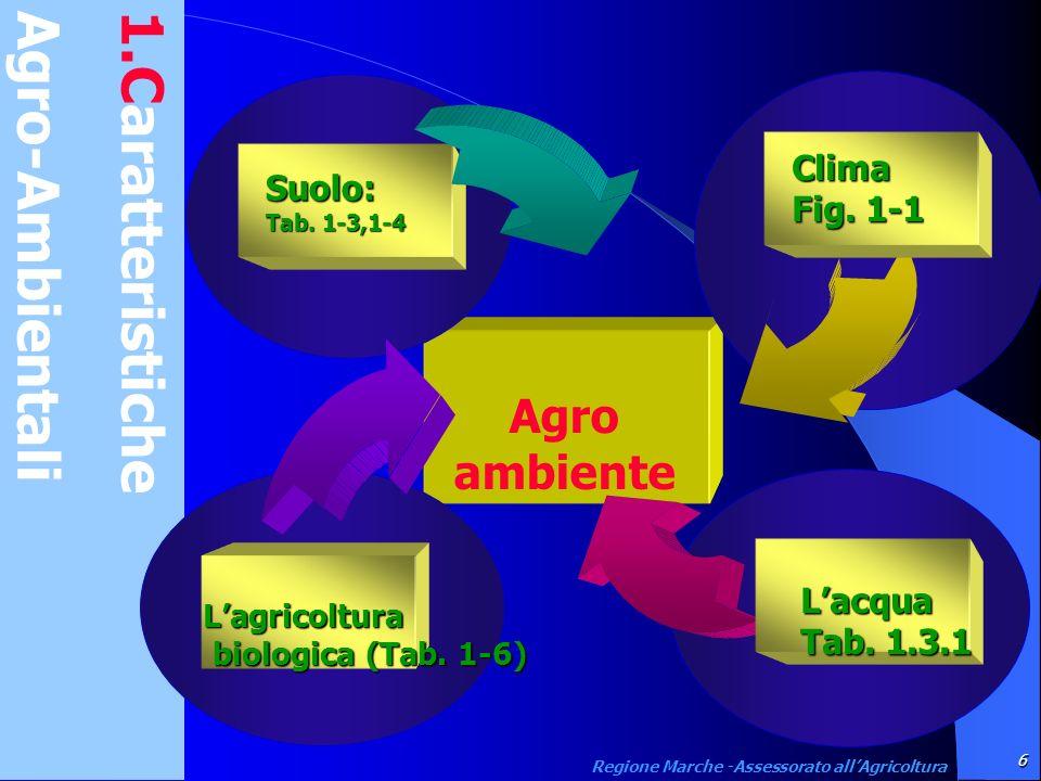 1.Caratteristiche Agro-Ambientali Agro ambiente Suolo: Tab. 1-3,1-4 Lacqua Tab. 1.3.1 Lagricoltura biologica (Tab. 1-6) biologica (Tab. 1-6) Clima Fig