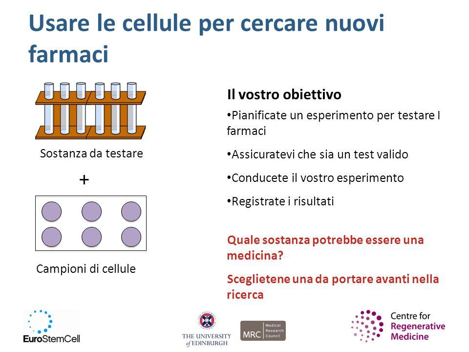 Usare le cellule per cercare nuovi farmaci Sostanza da testare + Campioni di cellule Il vostro obiettivo Pianificate un esperimento per testare I farm