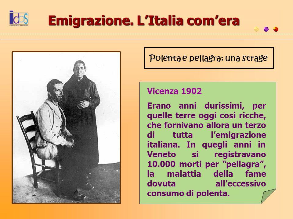 Emigrazione. LItalia comera Polenta e pellagra: una strage Vicenza 1902 Erano anni durissimi, per quelle terre oggi così ricche, che fornivano allora