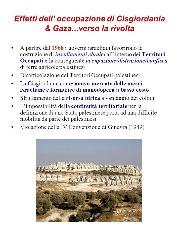 Effetti dell' occupazione di Cisgiordania & Gaza...verso la rivolta A partire dal 1968 i governi israeliani favorirono la costruzione di insediamenti