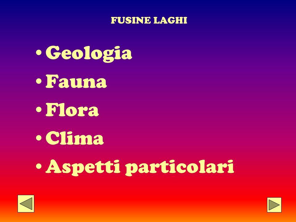 FUSINE LAGHI Geologia Fauna Flora Clima Aspetti particolari