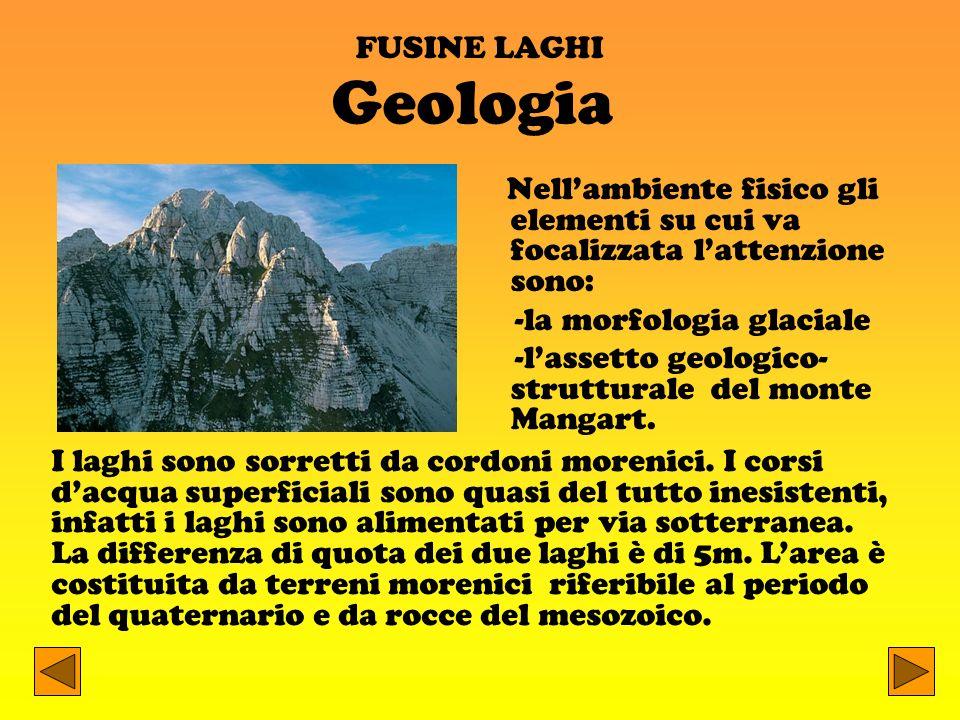 FUSINE LAGHI Nellambiente fisico gli elementi su cui va focalizzata lattenzione sono: -la morfologia glaciale -lassetto geologico- strutturale del mon