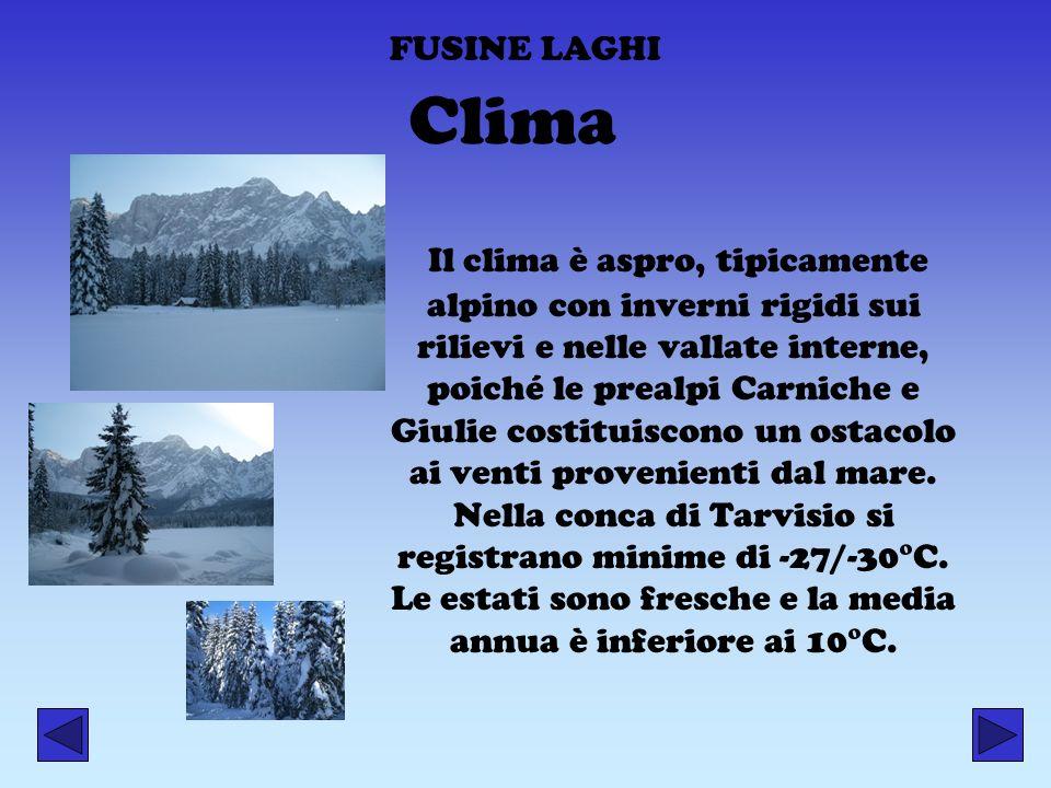 FUSINE LAGHI Il clima è aspro, tipicamente alpino con inverni rigidi sui rilievi e nelle vallate interne, poiché le prealpi Carniche e Giulie costitui