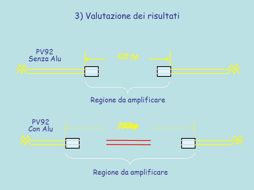 415 bp Regione da amplificare PV92 Senza Alu 300bp 715bp Regione da amplificare PV92 Con Alu 3) Valutazione dei risultati