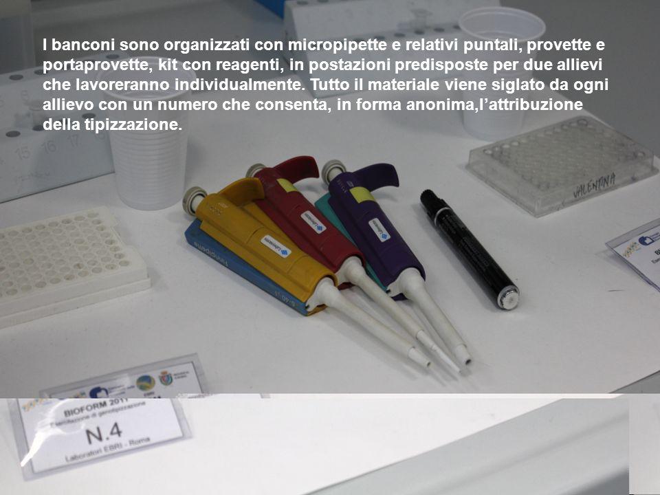I banconi sono organizzati con micropipette e relativi puntali, provette e portaprovette, kit con reagenti, in postazioni predisposte per due allievi