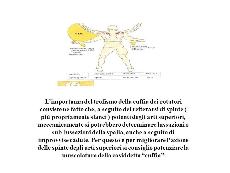Limportanza del trofismo della cuffia dei rotatori consiste ne fatto che, a seguito del reiterarsi di spinte ( più propriamente slanci ) potenti degli