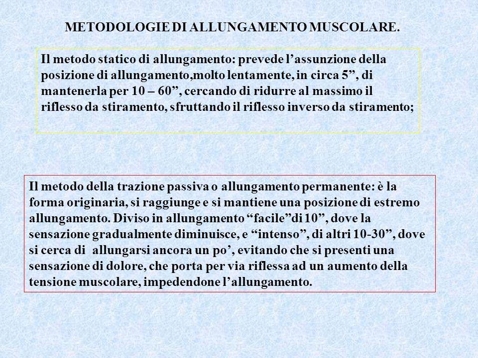 METODOLOGIE DI ALLUNGAMENTO MUSCOLARE. Il metodo statico di allungamento: prevede lassunzione della posizione di allungamento,molto lentamente, in cir