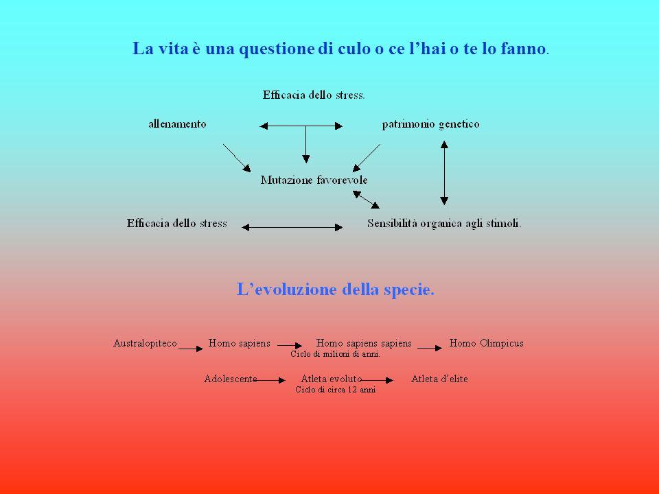 Legge del risparmio energetico: omeostasi.Ciclo della vita.