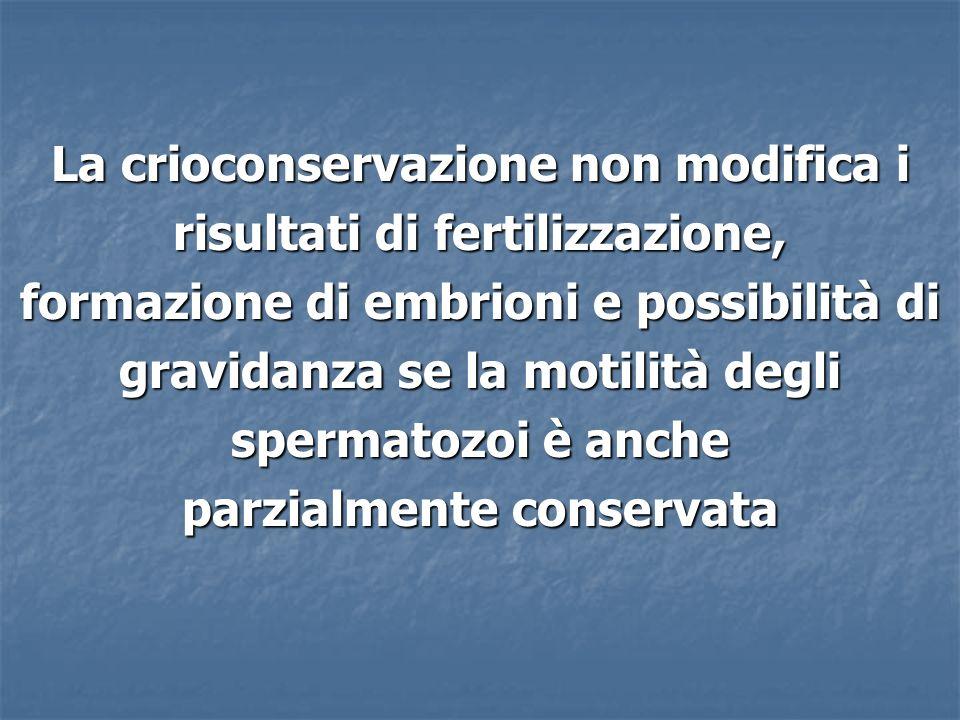 La crioconservazione non modifica i risultati di fertilizzazione, formazione di embrioni e possibilità di gravidanza se la motilità degli spermatozoi