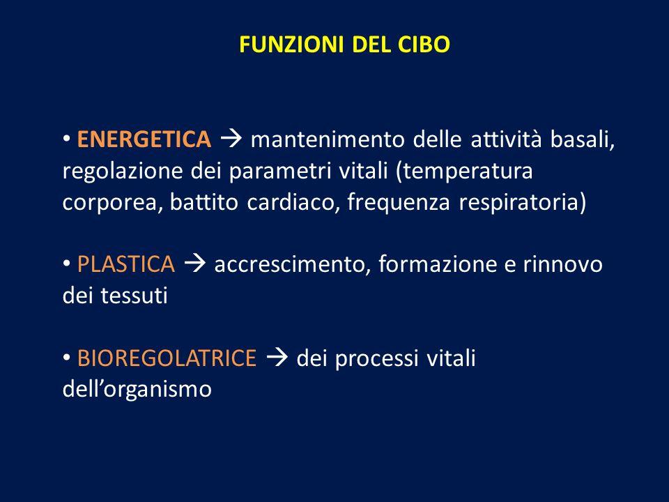 FUNZIONI DEL CIBO ENERGETICA mantenimento delle attività basali, regolazione dei parametri vitali (temperatura corporea, battito cardiaco, frequenza r