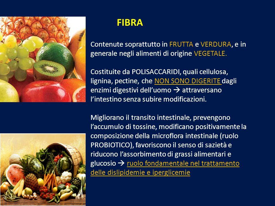 FIBRA Contenute soprattutto in FRUTTA e VERDURA, e in generale negli alimenti di origine VEGETALE. Costituite da POLISACCARIDI, quali cellulosa, ligni