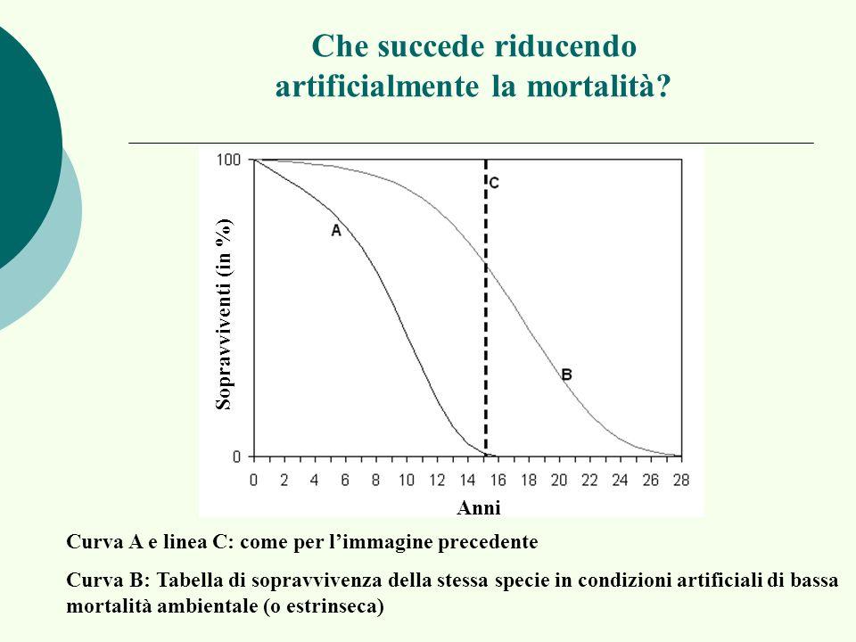 Che succede riducendo artificialmente la mortalità? Anni Sopravviventi (in %) Curva A e linea C: come per limmagine precedente Curva B: Tabella di sop
