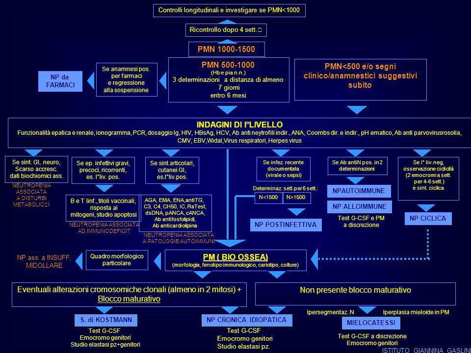 Controlli longitudinali e investigare se PMN<1000 PMN 1000-1500 PMN 500-1000 (Hb e pia n.n.) 3 determinazioni a distanza di almeno 7 giorni entro 6 mesi PMN<500 e/o segni clinico/anamnestici suggestivi subito Ricontrollo dopo 4 sett.