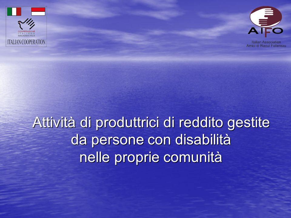Attività di produttrici di reddito gestite da persone con disabilità nelle proprie comunità