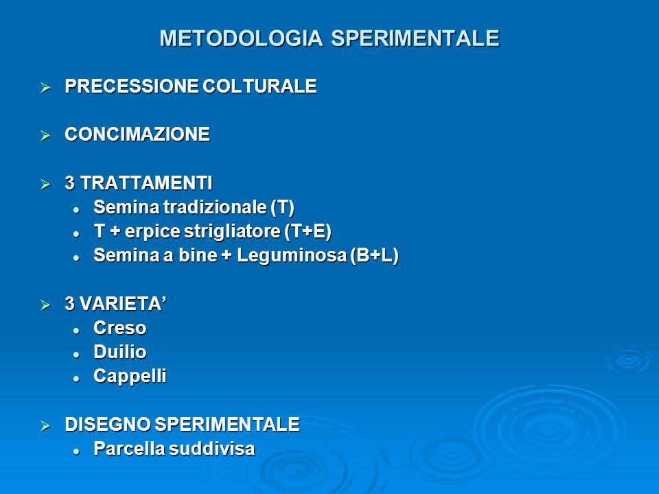 METODOLOGIA SPERIMENTALE PRECESSIONE COLTURALE PRECESSIONE COLTURALE CONCIMAZIONE CONCIMAZIONE 3 TRATTAMENTI 3 TRATTAMENTI Semina tradizionale (T) Sem