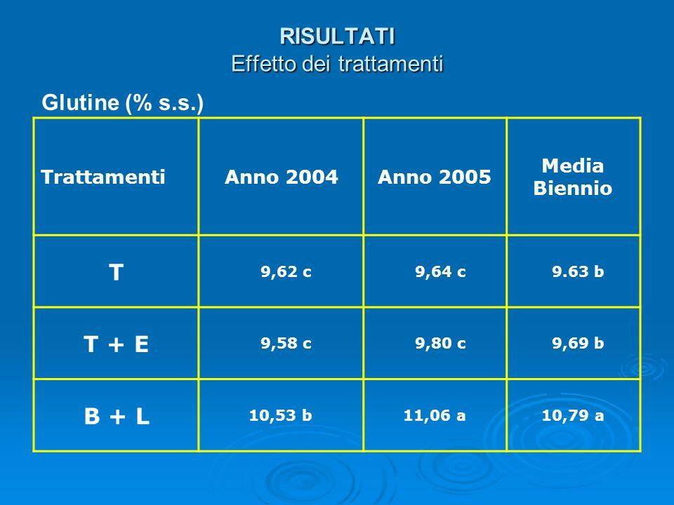RISULTATI Effetto dei trattamenti Glutine (% s.s.) TrattamentiAnno 2004Anno 2005 Media Biennio T 9,62 c 9,64 c 9.63 b T + E 9,58 c 9,80 c 9,69 b B + L