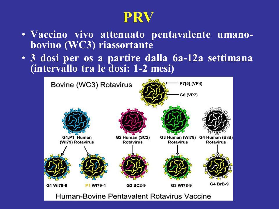 RIX 4414 Conclusioni Il vaccino anti-rotavirus con ceppo umano attenuato, RIX4414, si è dimostrato efficace verso i sierotipi G1 e non G1, sicuro e be