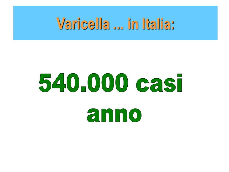Varicella... in Italia: 1 caso di varicella Al minuto Circa 1440 casi Dalle 7 alle 11 ospedalizzazioni Al giorno Circa 42 mila casi di varicella Al me