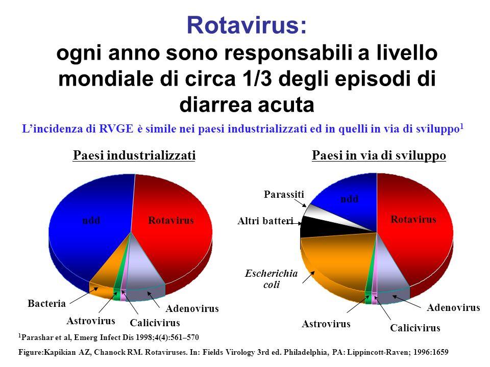 THE FACE OF ROTAVIRUS Diarrhea Vomiting Dehydration Shock Death