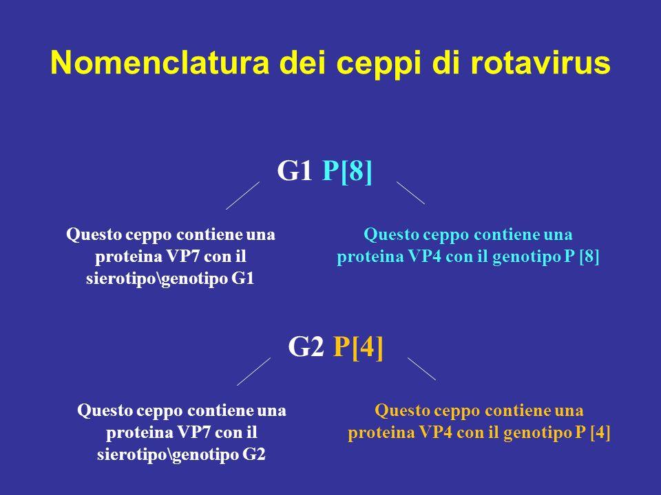 Il Virus G1P[8] VP4VP7 Tipo C, D, E, F, G GP (1-14 ) G2P[4]G3P[8]G4P[8] Reoviridae Famiglia Gruppo B (7) VP6 G9P[8] A Modificato da 1 Parashar et al,