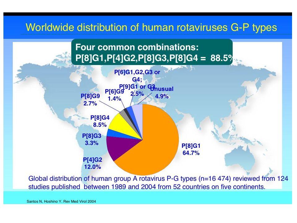 Rotavirus GE Impatto epidemiologico nei Paesi industrializzati ed in via di sviluppo ospedalizzazionidecessi Livello socio-economico Basso Medio- bass