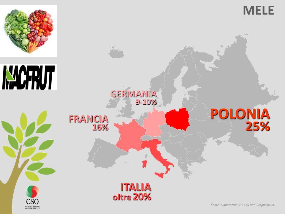 MELE Fonte: elaborazioni CSO su dati Prognosfruit POLONIA 25% 25% ITALIA oltre 20% FRANCIA 16% 16% GERMANIA 9-10% 9-10%