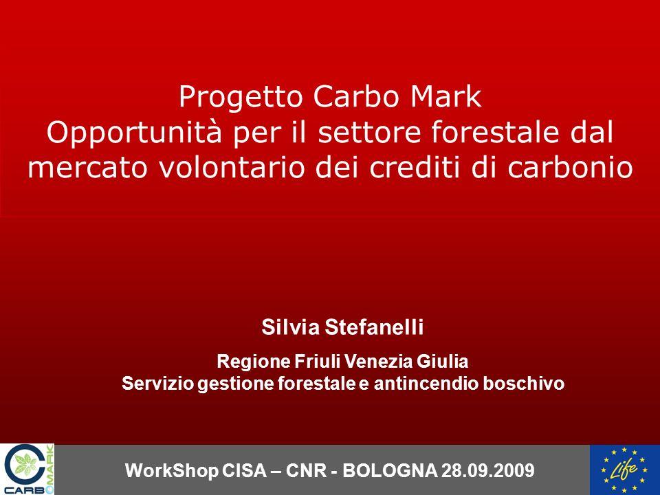 WorkShop CISA – CNR - BOLOGNA 28.09.2009 Silvia Stefanelli Regione Friuli Venezia Giulia Servizio gestione forestale e antincendio boschivo Progetto Carbo Mark Opportunità per il settore forestale dal mercato volontario dei crediti di carbonio
