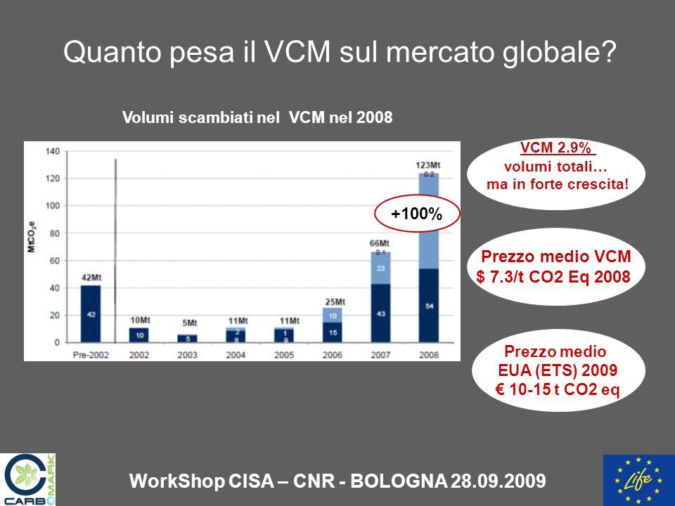 Quanto pesa il VCM sul mercato globale.