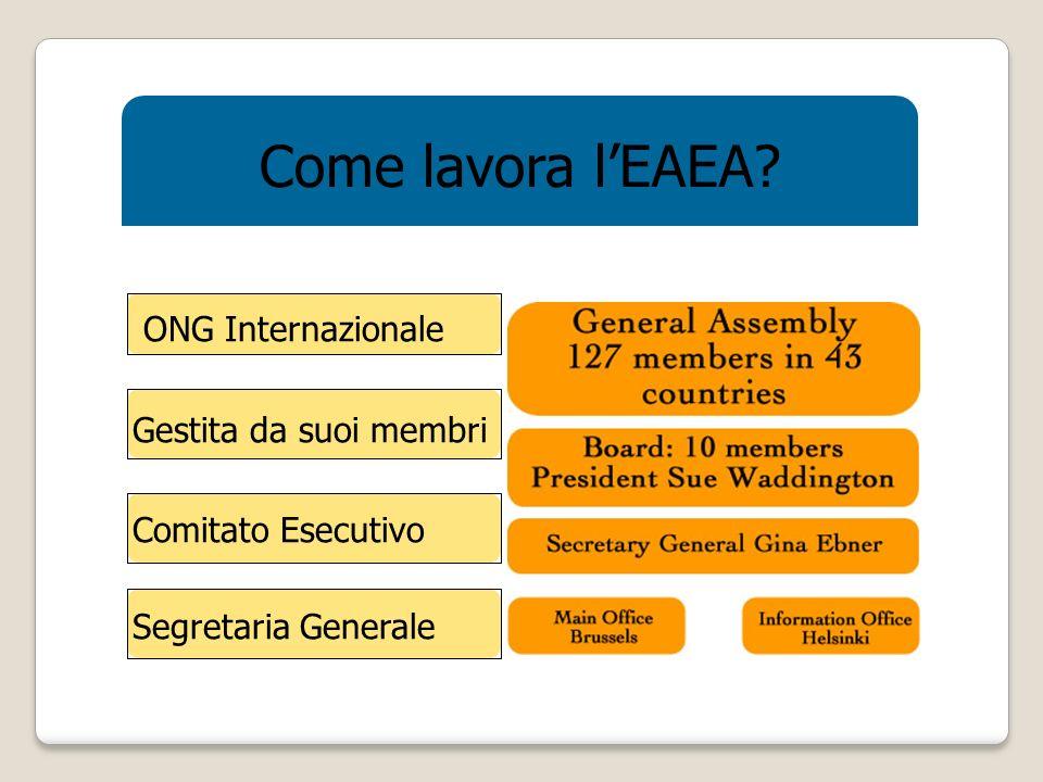Come lavora lEAEA ONG Internazionale Gestita da suoi membri Comitato Esecutivo Segretaria Generale