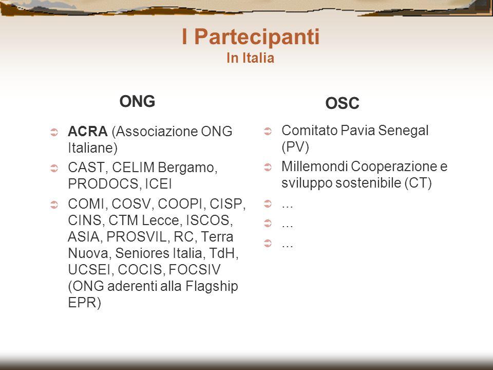 ACRA (Associazione ONG Italiane) CAST, CELIM Bergamo, PRODOCS, ICEI COMI, COSV, COOPI, CISP, CINS, CTM Lecce, ISCOS, ASIA, PROSVIL, RC, Terra Nuova, S