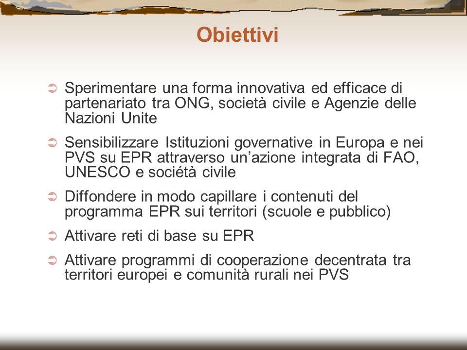 Sperimentare una forma innovativa ed efficace di partenariato tra ONG, società civile e Agenzie delle Nazioni Unite Sensibilizzare Istituzioni governa
