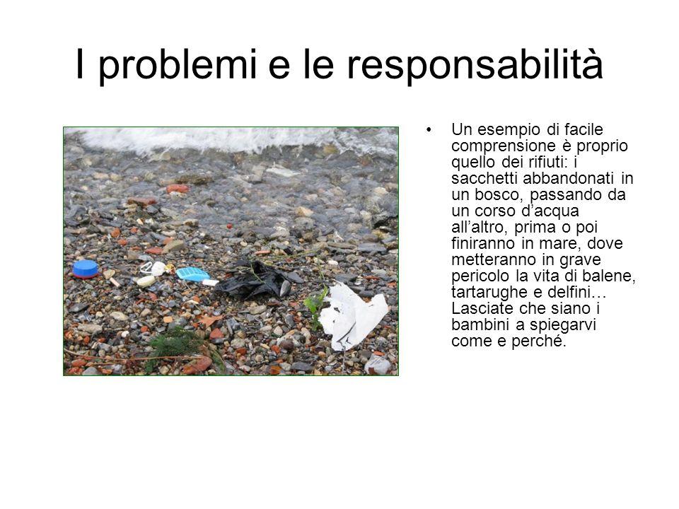 I problemi e le responsabilità Un esempio di facile comprensione è proprio quello dei rifiuti: i sacchetti abbandonati in un bosco, passando da un cor