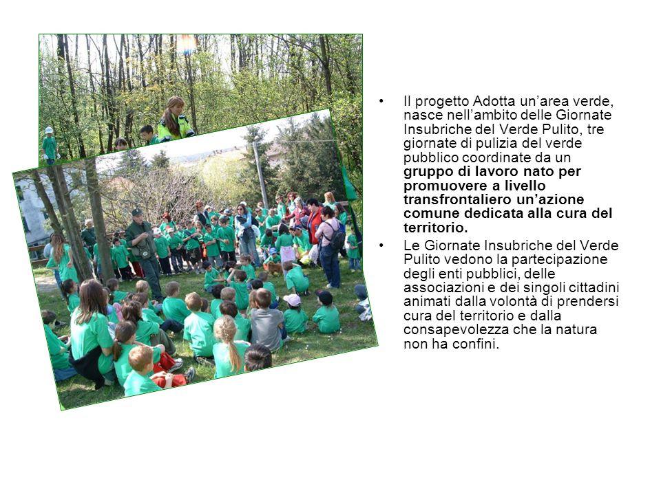 Il progetto Adotta unarea verde, nasce nellambito delle Giornate Insubriche del Verde Pulito, tre giornate di pulizia del verde pubblico coordinate da
