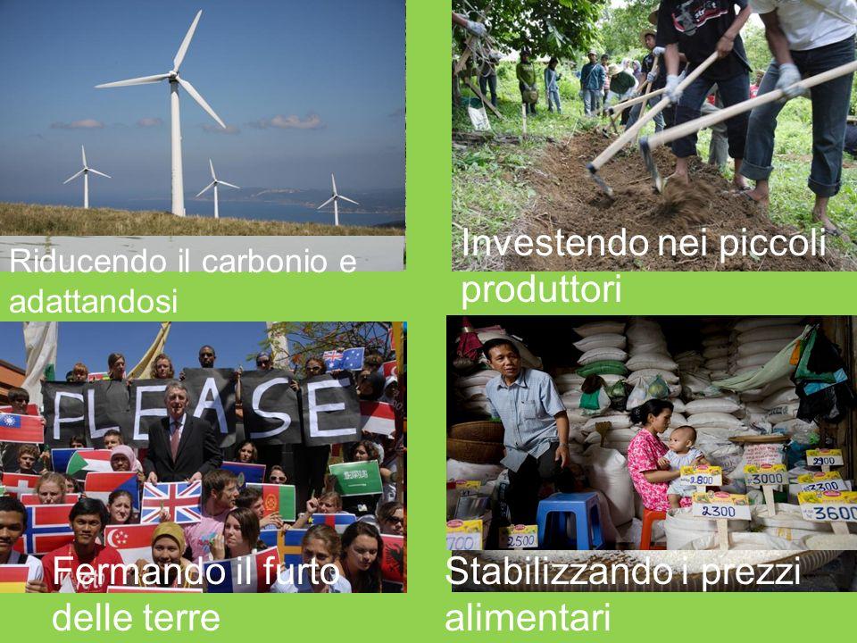 Riducendo il carbonio e adattandosi Investendo nei piccoli produttori Fermando il furto delle terre Stabilizzando i prezzi alimentari