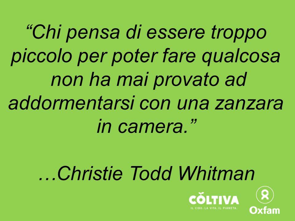 Chi pensa di essere troppo piccolo per poter fare qualcosa non ha mai provato ad addormentarsi con una zanzara in camera. …Christie Todd Whitman