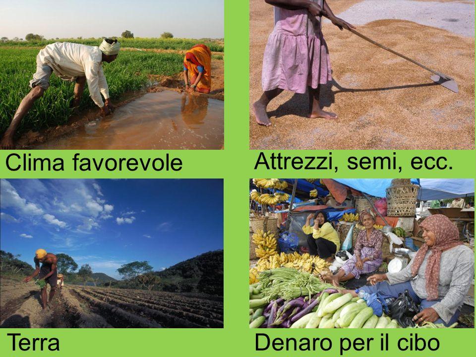 Clima favorevole Attrezzi, semi, ecc. Terra Denaro per il cibo