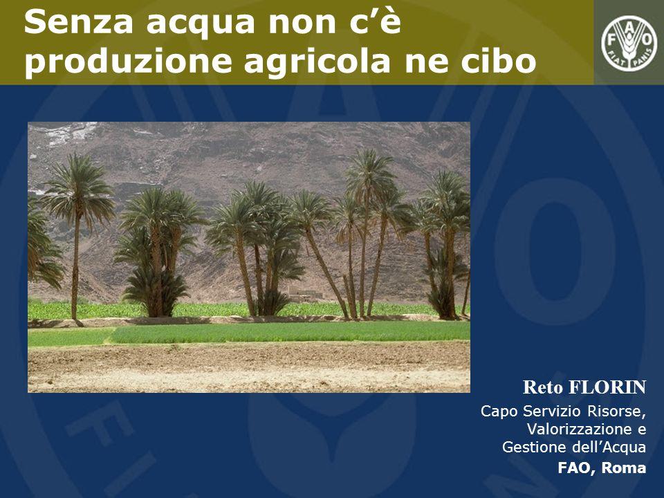 Reto FLORIN Capo Servizio Risorse, Valorizzazione e Gestione dellAcqua FAO, Roma Senza acqua non cè produzione agricola ne cibo