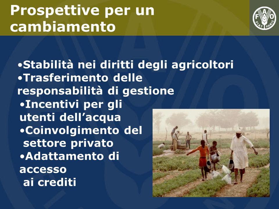 Stabilità nei diritti degli agricoltori Trasferimento delle responsabilità di gestione Prospettive per un cambiamento Incentivi per gli utenti dellacq