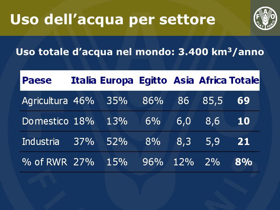 Agricoltura 69% Industria 21% Acqua domestica 10% 8% delle risorse dacqua dolce disponibili è attualmente consumato 20% delle terre agricole è irrigato e produce il 40% del cibo Lagricoltura è il principale consumatore dacqua